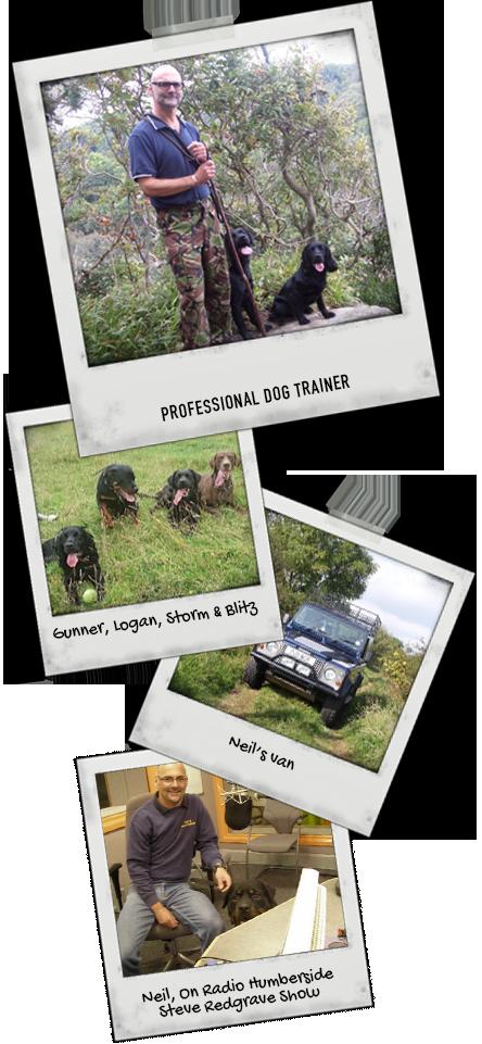 1-2-1 Dog Training - About Us